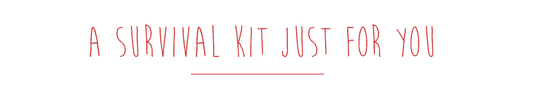 Survial_kit-1445347188