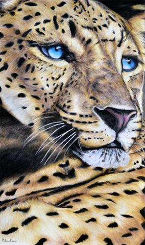 Regard_de_leopard_h_l_ne_roux_01-1445786543