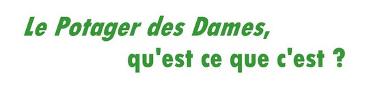 Kisskissbankbank_-_titre_1_fr-1445808422