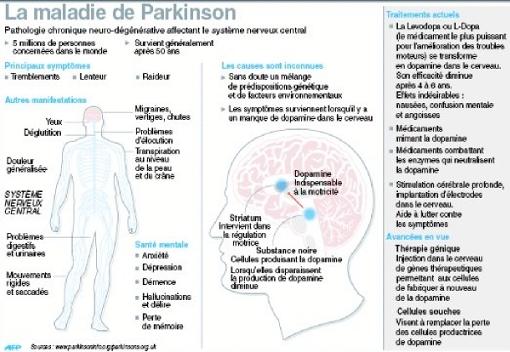 Parkinson-l-espoir-d-un-traitement-par-le-gene_777085-1445957071