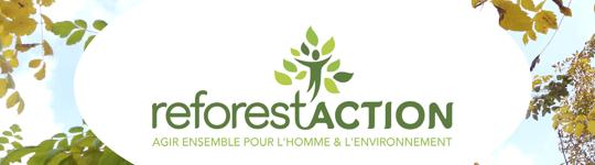 Reforest-1446222591