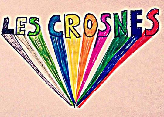 Crsnes-001-1447346821