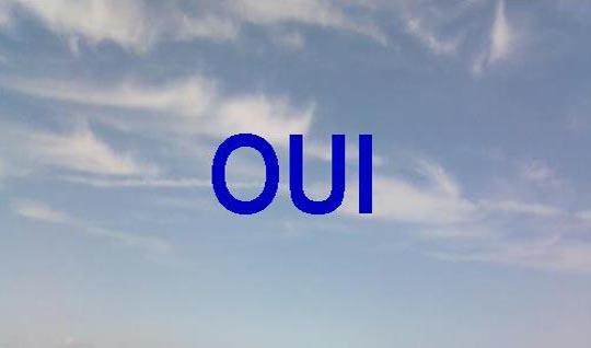 Verso_oui2_copie-1447684639