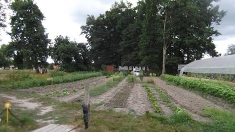 Vue_jardin_fig6_2-1447785397