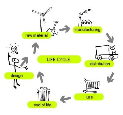 Life_cycle-1448033015