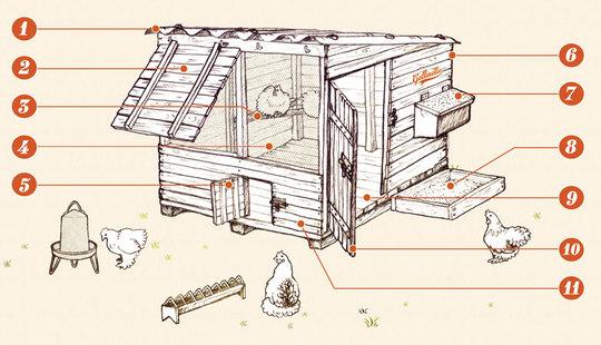 Construire-poulailler-plan-gallinette-1448139273