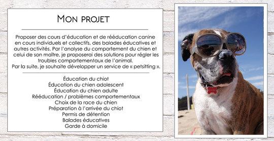 Projet-kisskiss-1448380053