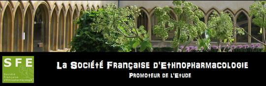 Sfe-promoteur-1448641973