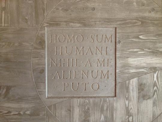 Homo_sum-1449913362