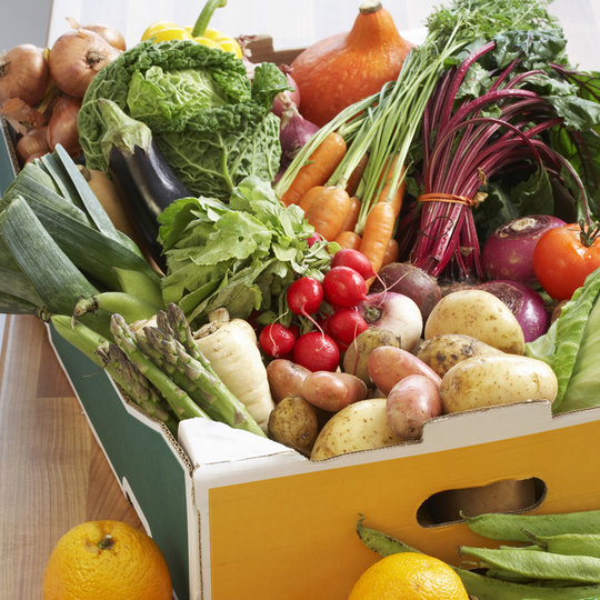 Biopack_fruits-et-legumes-1450568507