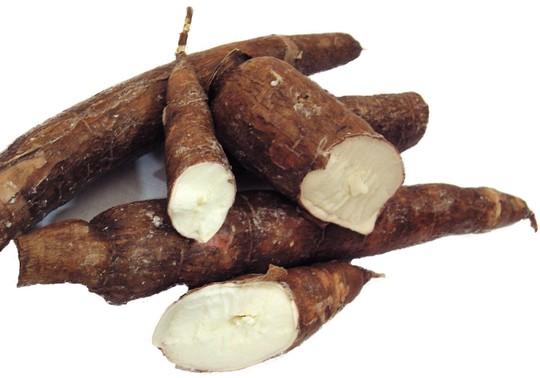 Cassava-1450794367