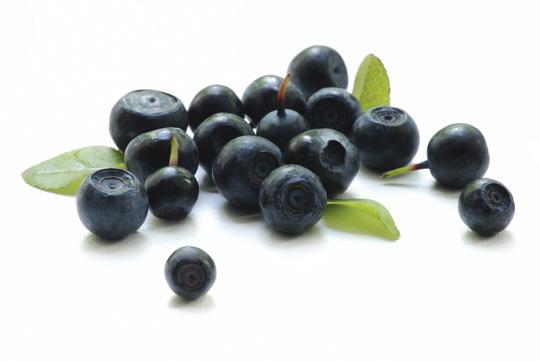 Baie-acai-bio-antioxydant-fruit-maigrir-poudre-pure-perte-poids-superfruit-vente-biologique-agoji-1450794387