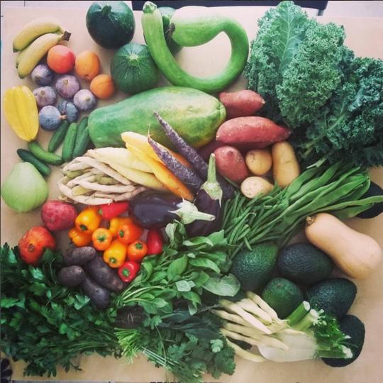Legumes-1451683068