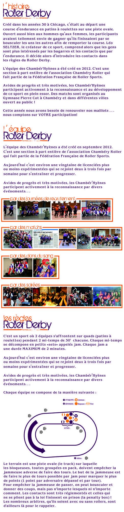 L_histoire_roller_derby_ensemble_petit2-1452026222