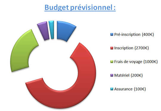 Budget-1452098880