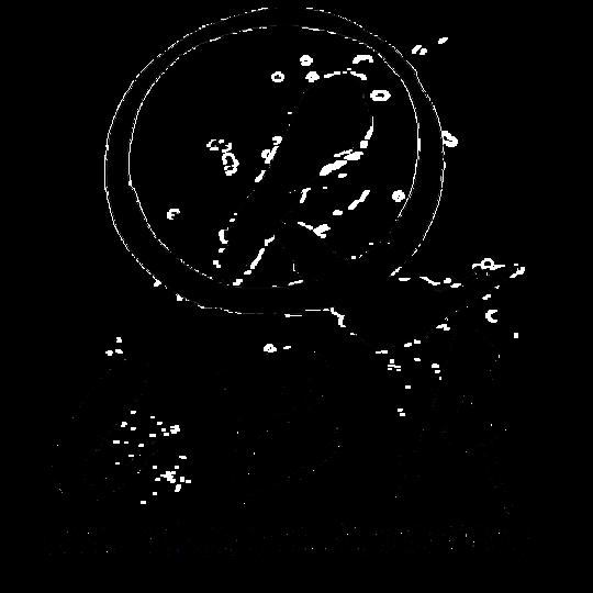 Noir-1452341705