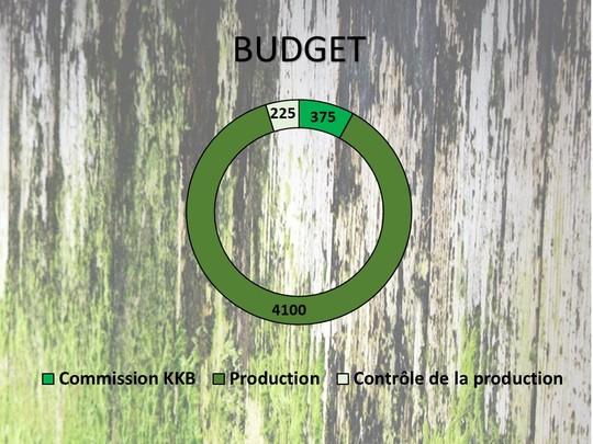Budget-1453912459