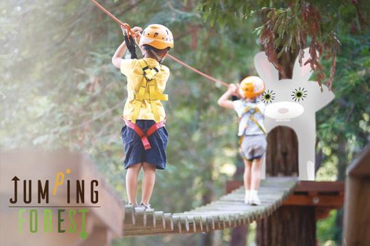 Parcours-dans-les-arbres_2-1454495772