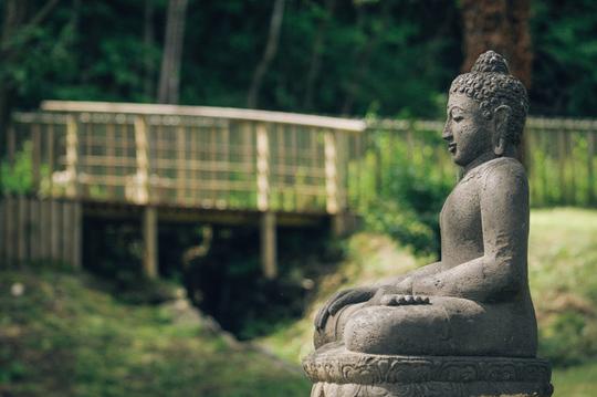 Bouddha_ext_dojo_bd-1454950609