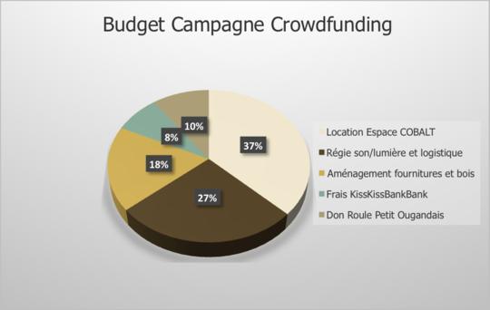 Budget_campagne_okokok-1455045003