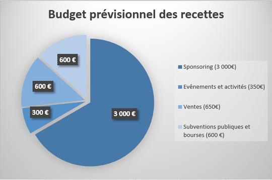 Budget_r_visionnel_des_recettes-1455054146