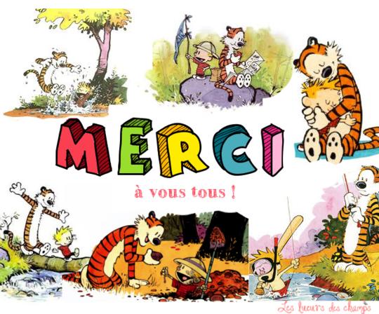 Merci2-1455476778
