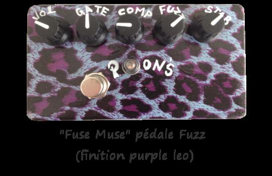 Fuse_muse_purple_leo_kkbb-1456238072