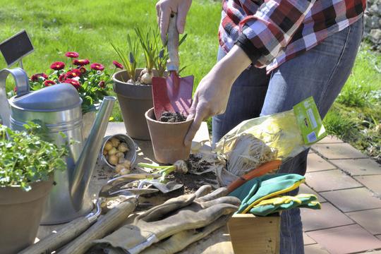 7773230603_les-outils-indispensables-du-jardinier-1456494299