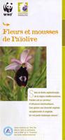 Depliant-fleurs-mousses-1456494540