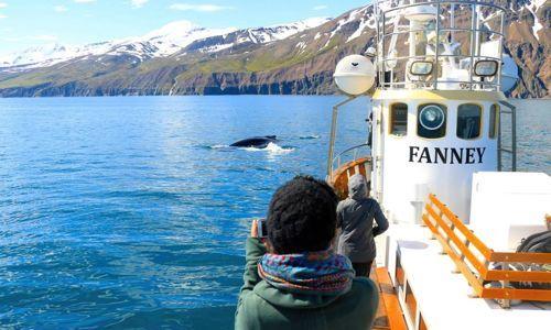 Salka-whale-watching-husavik2-1456824813