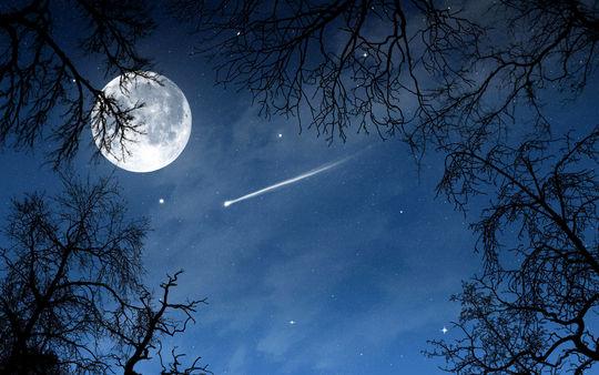 Arbres-etoile-etoile-filante-lune-nuit-pleine-lune_1920x1200-1457522532