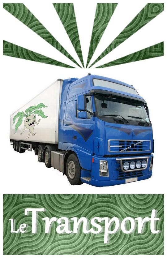 Transport-1457532916