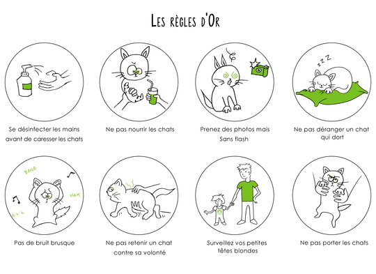 Les_regles_d_or-1458063431