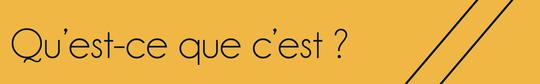 Banni_re_qu_est_ce_que_c_est-01-1458240142