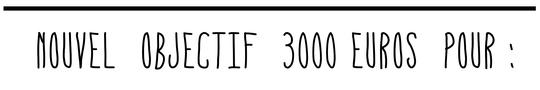Nouvel_objectif-1458763019