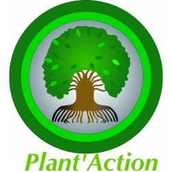 Logo_plan_action-1458812621