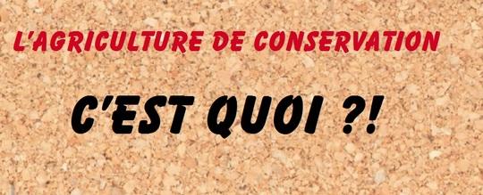 Agriculture_de_conservation-1458829287