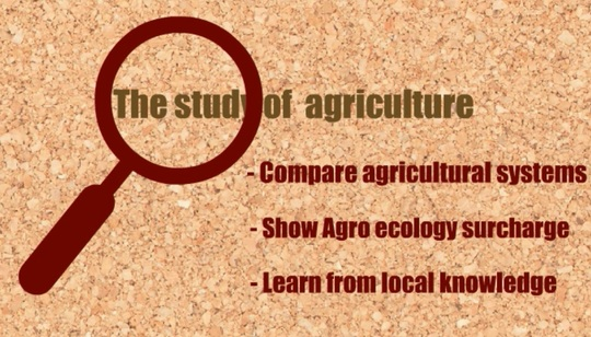Study_agriculture-1458829535