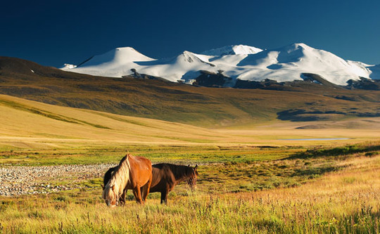 Mongolie-paysages-1459265858