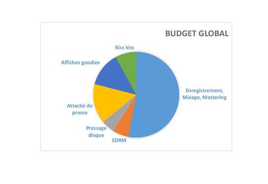 Graphique_budget-1460022976