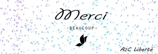 Projet_reussi_merci-1460374166