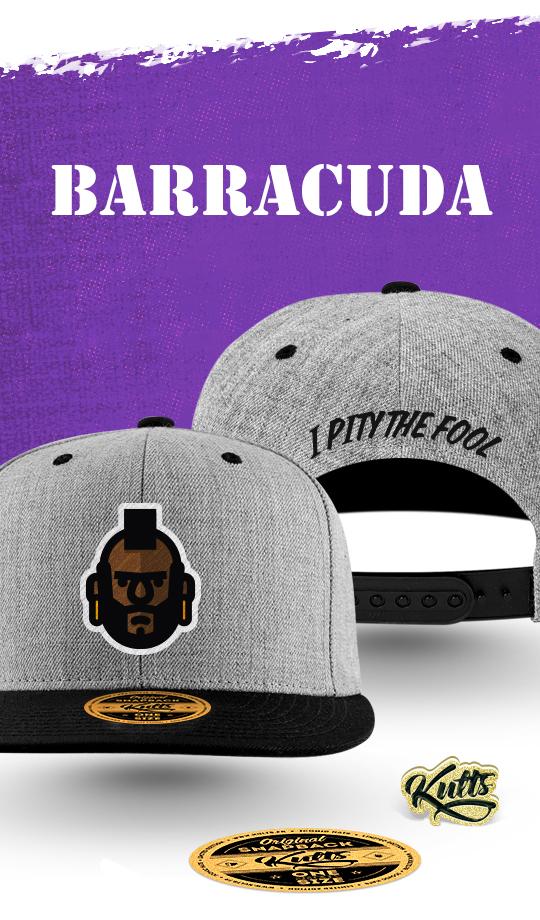Barracuda-cap-classic-1460724296