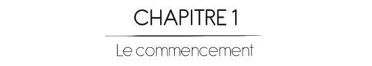 Chapitre1-1460918067