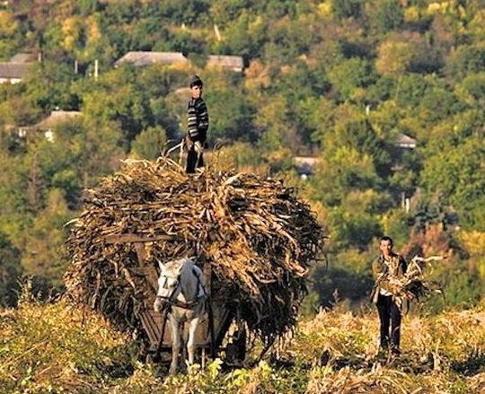 Moldova.farming-1461496220