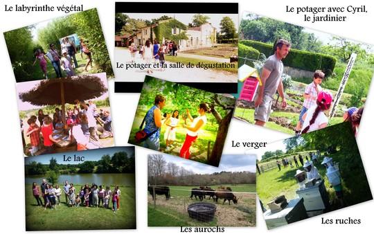 Le_jardin_des_l_gumes_oubli_s-1461599224