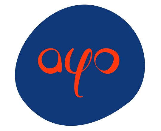 Ayo-armenian-youth-organizationimg5-1461755977