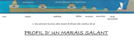 Profil-marais-salant-ile-de-re-1462019558