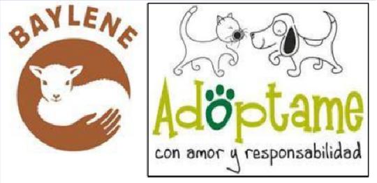 Logos_associations-1462293308