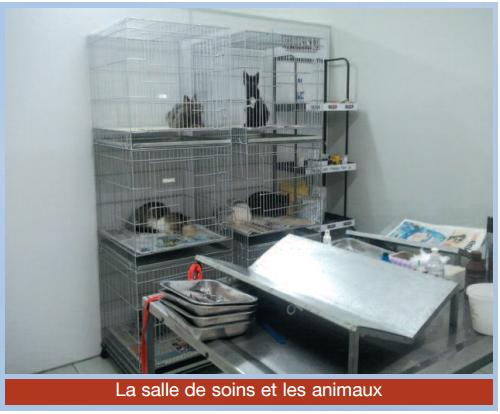Salle_de_soins-1462609230