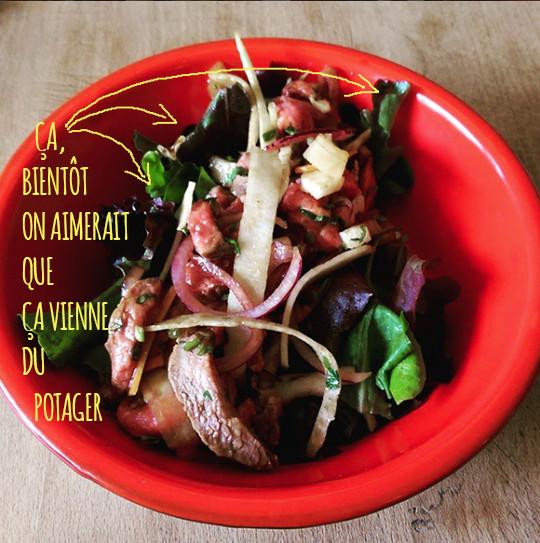 Assiette_rouge_le_gumesviandes-1462640889